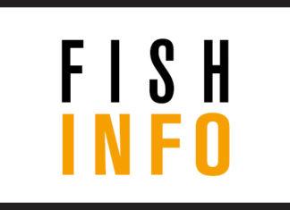 Logo pour une information du 1er avril de La Lettre de l'Assurance.