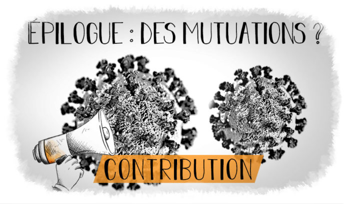 Serie Covid 19 contribution epilogue assurance